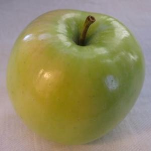 Ginger Gold apple (Bar Lois Weeks photo)