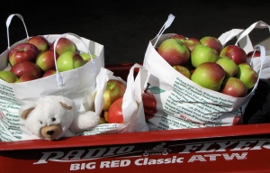 McIntosh is among the New England apple varieties now ready for picking. (Russell Steven Powell photo)
