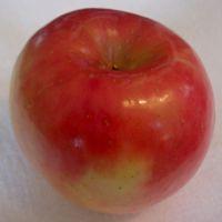 Fuji apple (Bar Lois Weeks photo)