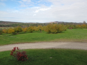 Chapin Orchard, Essex Junction, Vermont