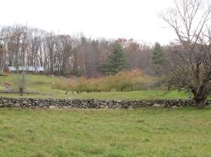 New Salem Preserves in New Salem, Massachusetts (Russell Steven Powell photo)