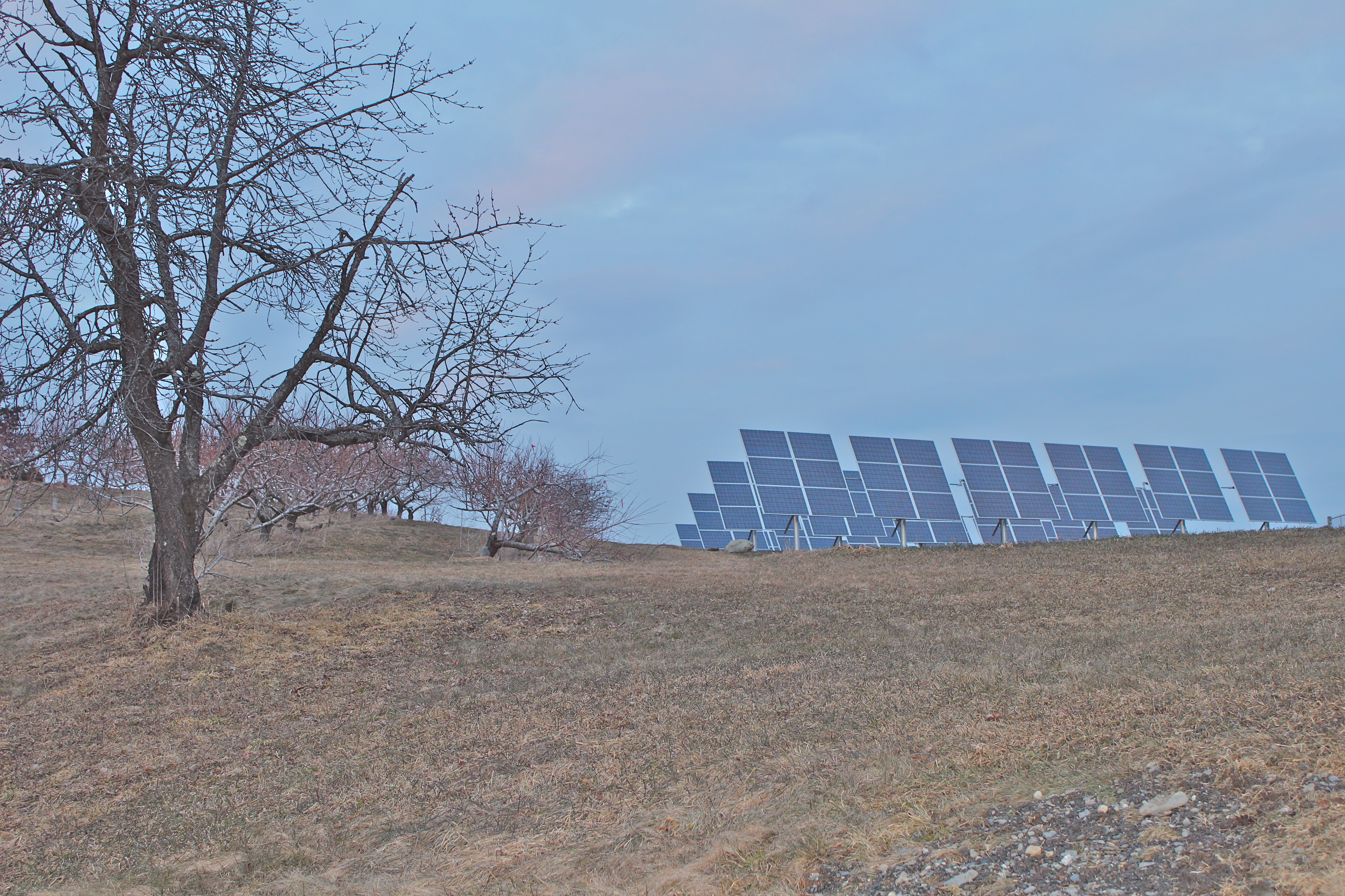 Solar panels at Green Mountain Orchards in Putney, Vermont, sit high in a field behind the retail barn. (Russell Steven Powell photo)