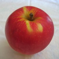 Sansa apple (Bar Lois Weeks photo)