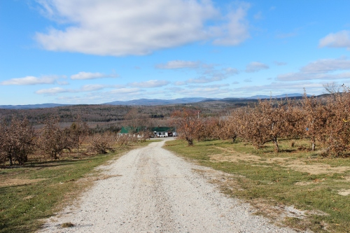 The view from Ricker Hill Orchards, Turner, Maine (Bar Lois Weeks photo)