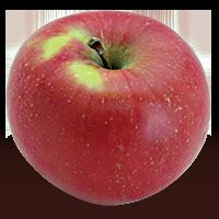 Brock apple (Bar Lois Weeks photo)