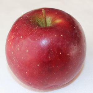 Enterprise apple (Bar Lois Weeks photo)