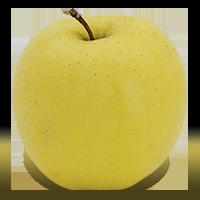 Silken apple (Bar Lois Weeks photo)