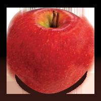 Spencer apple (Bar Lois Weeks photo)