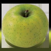 Ananas Reinette apple (Bar Lois Weeks photo)