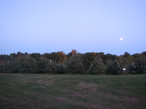 Moon rising over Buell's Orchard, Eastford, Connecticut (Russell Steven Powell photo)