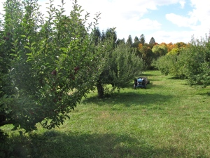 Brookfield Orchards, North Brookfield, Massachusetts (Russell Steven Powell photo)
