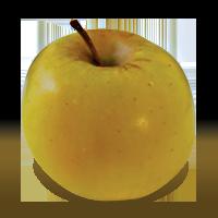 Mutsu apple (Bar Lois Weeks photo)