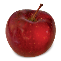 Red Delicious apple (Bar Lois Weeks photo)