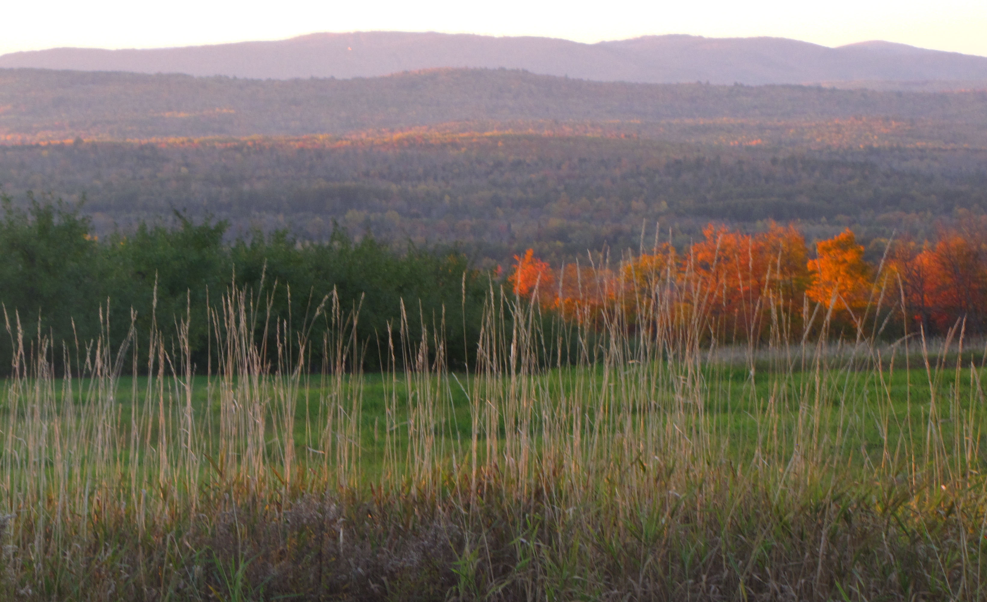The view from North Star Orchards, Madison, Maine, in mid-October. Like many New England orchards, North Star's farm store will remain open until Christmas. (Russell Steven Powell photo)