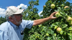 Frank Carlson of Carlson Orchards, Harvard, Massachusetts (Bar Lois Weeks photo)