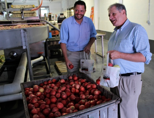Massachusetts Commissioner of Agriculture John Lebeaux, right, and Assistant Commissioner Jason Wentworth grab some apples while touring the new packing line at J. P. Sullivan Co., in Ayer. Commissioner Lebeaux earlier presented Fairview Orchards Manager Sean O'Neill with a proclamation from Gov. Charles Baker naming September New England Apple Month. (Russell Steven Powell photo)